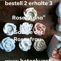 #Rose #Garten #Gartengestalung #Wohnen